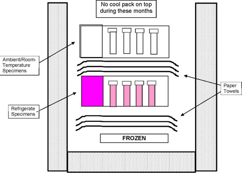 Packing a Refrigerate/Ambient Shipping Container in summer